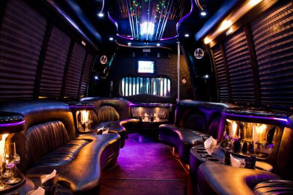15 Person Party Bus Rental Jacksonville